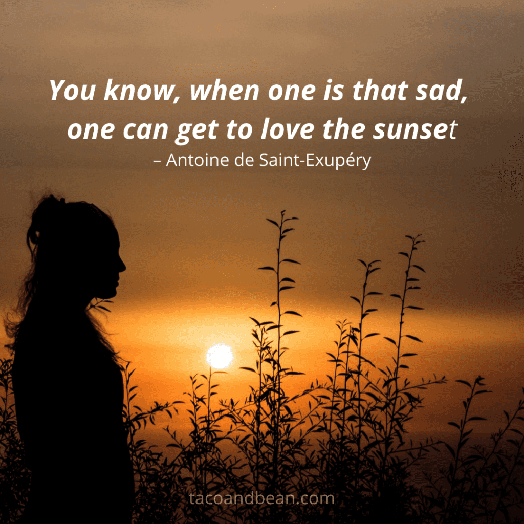 a quote about a sunset for instagram and facebook