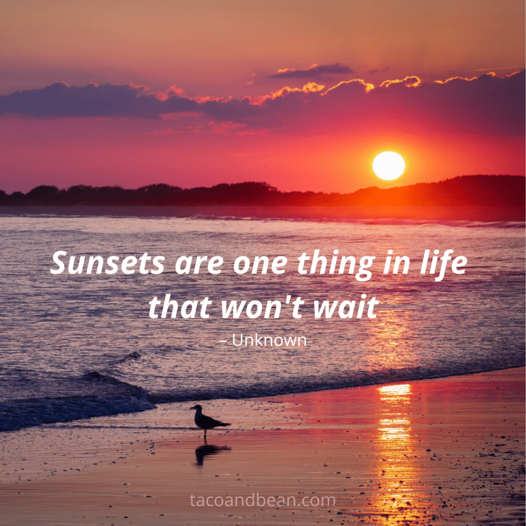 a quote about sunset for use on instagram and for motivation and inspiration